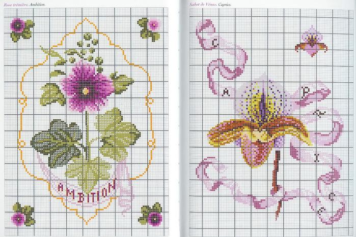 Langage des Fleurs 24 (700x467, 171Kb)