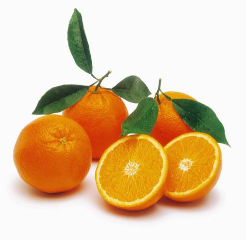 4278666_oranges (493x480, 59Kb)