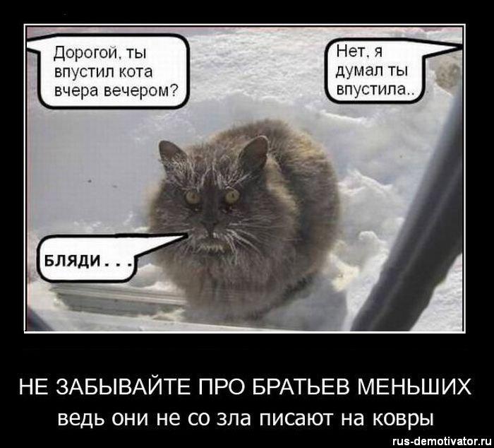1302418128_nezabivayte-pro-bratyev-mensheh (700x634, 58Kb)