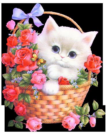 Розовые букеты на прозрачном фоне