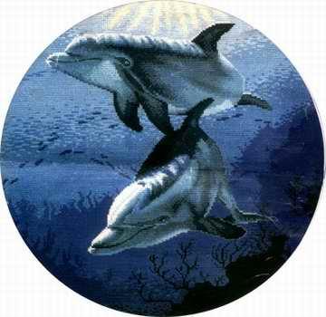 РТО Дельфины. Обсуждение на