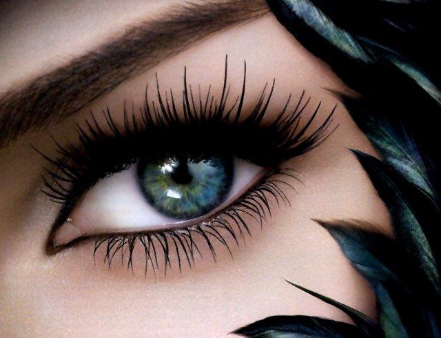 http://img1.liveinternet.ru/images/attach/c/3/76/276/76276963_large_4403711_4f15aadfd425.jpg