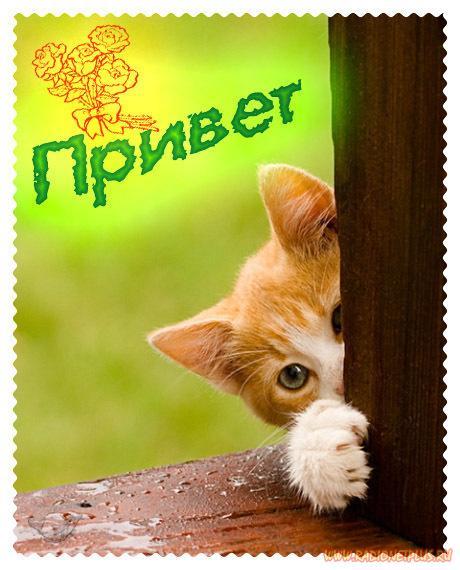 открытки как дела: