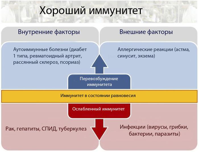http://img1.liveinternet.ru/images/attach/c/3/76/294/76294875_large_111.jpg