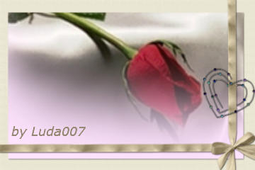 3427527_prof (360x240, 11Kb)