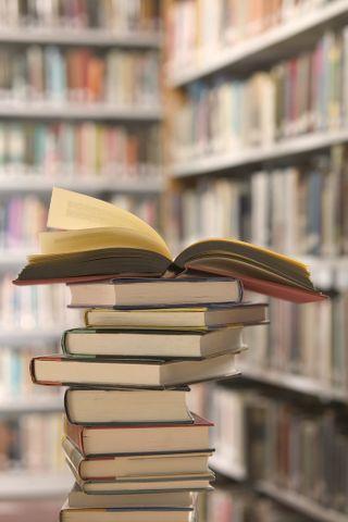 книги (320x480, 21Kb)