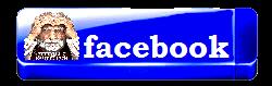 3996605_merlinwebdesignfacebook11 (250x79, 20Kb)