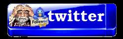 3996605_merlinwebdesigntwitter11 (250x79, 33Kb)