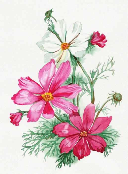 flowers (516x700, 142Kb)
