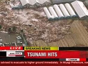 Высота цунами в Японии (293x220, 17Kb)