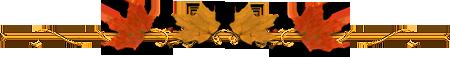 48881819_Bezikar (450x57, 31Kb)