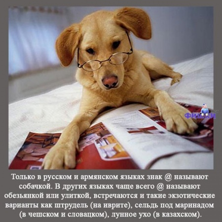 http://img1.liveinternet.ru/images/attach/c/3/76/358/76358011_01_interesnuye_faktuy.jpg