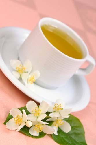 зеленый чай помогает при похудении
