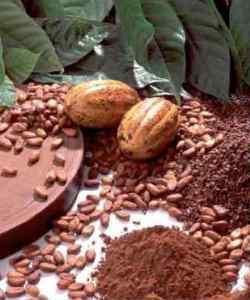 Применение какао-порошка в косметических целях. /2719143_cocoa (250x300, 15Kb)