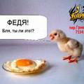 цыпленок Федя (120x120, 6Kb)