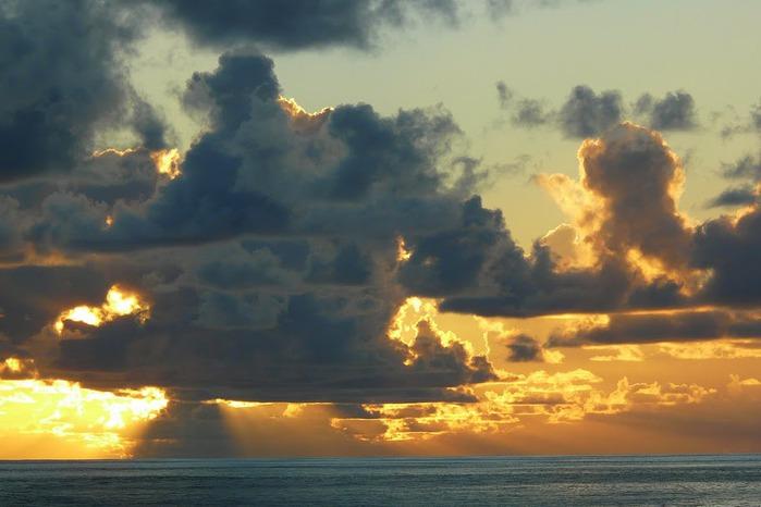 Атолл Альдабра — чудо природы 50447