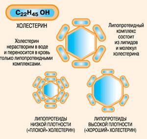 holest6 (300x285, 27Kb)