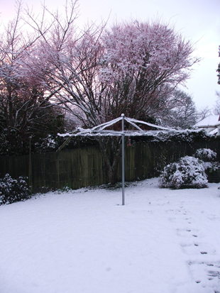 snow 1 (310x413, 101Kb)