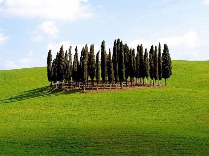 Италия - фото красивейших мест 31