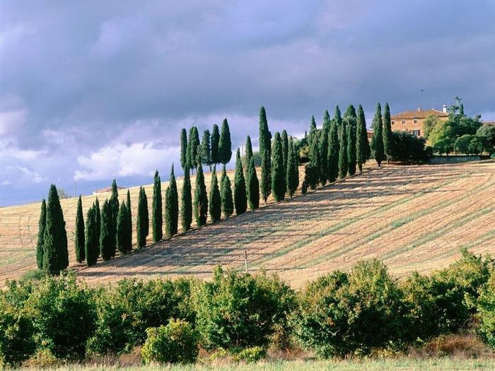 Италия - фото красивейших мест 46