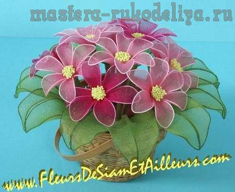 fleur_191 (475x388, 27Kb)