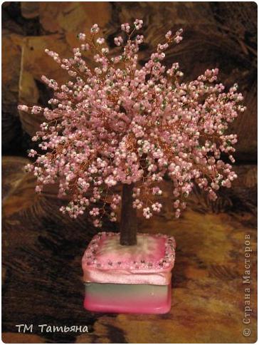 Бонсай топиарий Мастер-класс 8 марта Бисероплетение Дерево Сакура М К Бисер фото 2.
