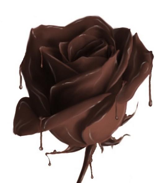 шок роза (500x589, 31Kb)