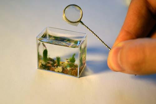 маленький аквариум (500x333, 32Kb)