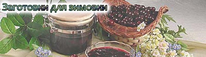 74343514_konservashki (698x194, 51Kb)