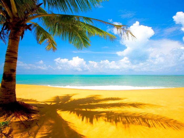 Beach 67 (700x525, 145Kb)