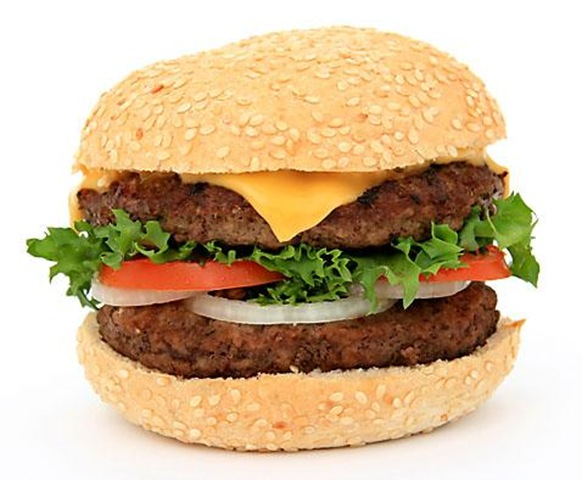 lastdishhamburger_3 (582x480, 70Kb)
