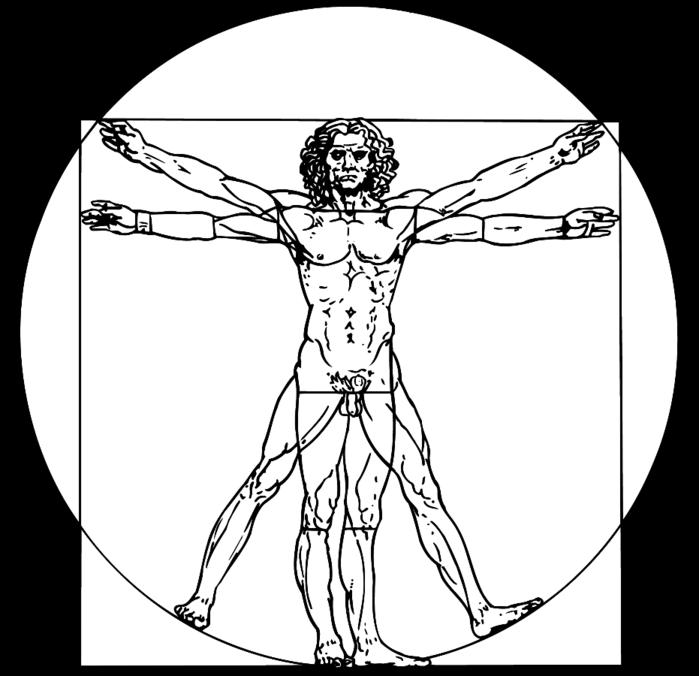 Символы науки: витрувианский человек Леонардо да Винчи в векторе, эволюция