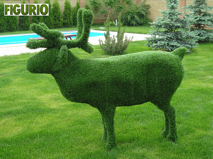 Животные из травы