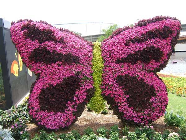Клумба из цветов в виде бабочки