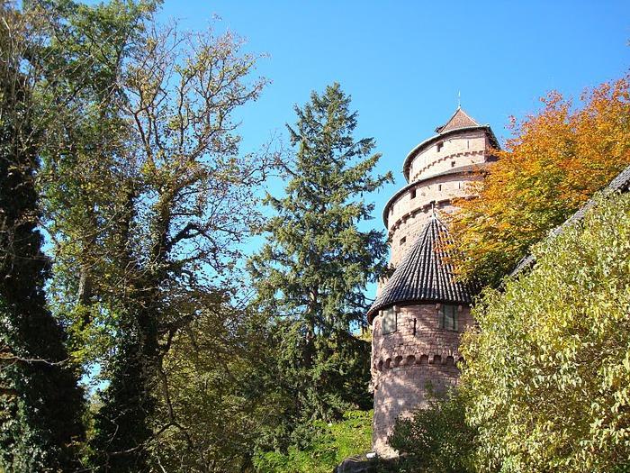 Замок Верхний Кенигсбург (Chateau du Haut-Koenigsbourg) 40736
