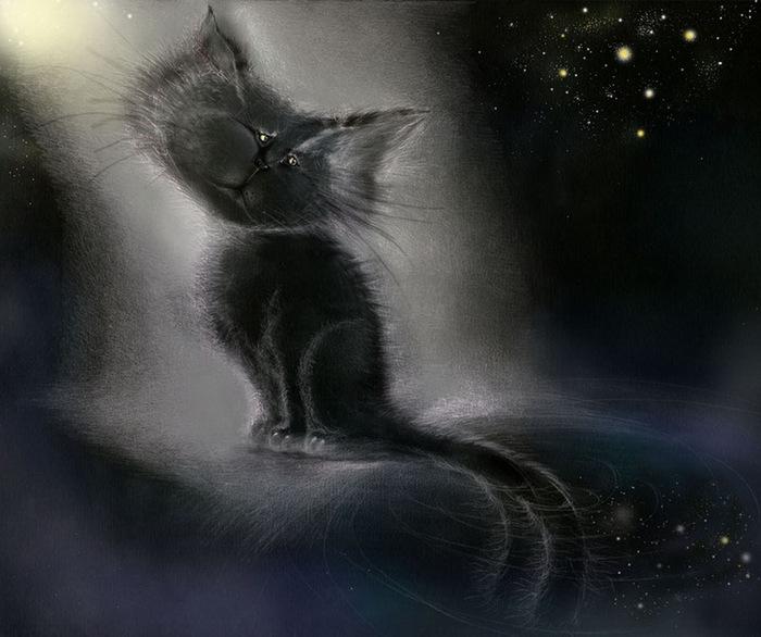 Лунный кот (2) (700x586, 104Kb)