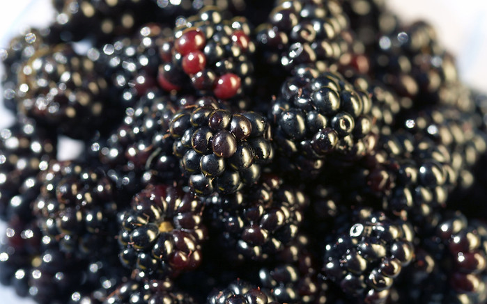 Food_Fruits_and_Berryes_Blackberry_020880_ (700x437, 109Kb)