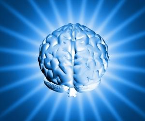 мозг (300x250, 50Kb)