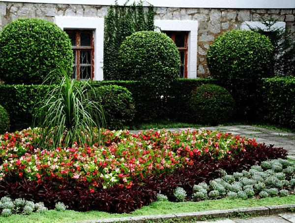 nikitsky_botanical_garden (600x454, 151Kb)