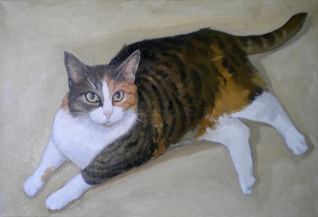 Серия сообщений кошки иллюстрация