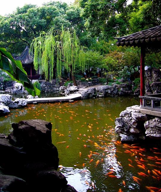 yuyuan_garden (538x640, 236Kb)