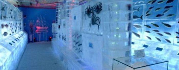 Открытие ледяного аквариума в Японии./2719143_002564 (699x273, 30Kb)