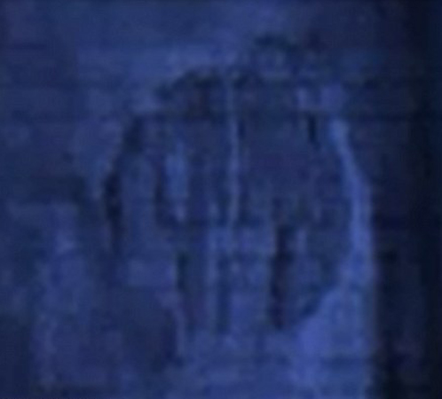 TretiIReIhsprjatalnadneBaltiIskogomorjaletayuschuyutarelku (498x450, 102Kb)