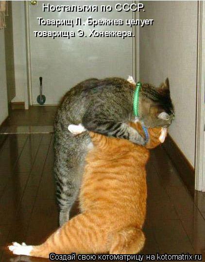 Котоматрица - Товарищ Л. Брежнев целует  товарища Э. Хонеккера. Ностальгия по СССР (422x538, 40Kb)