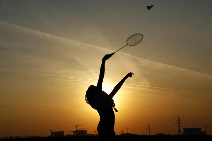 4278666_badminton (700x467, 253Kb)