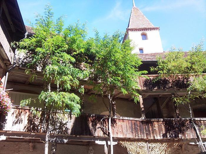 Замок графов де Грюйер (Chateau de Gruyeres) 74992