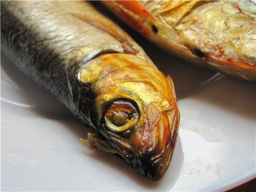 рыбо (500x375, 36Kb)