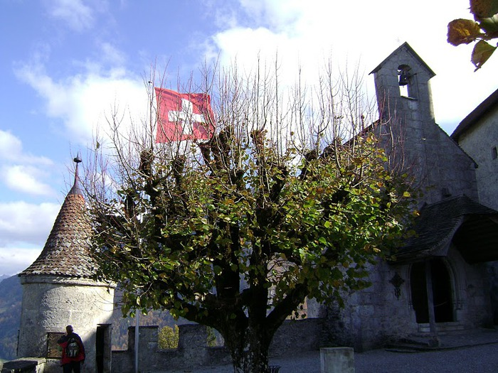 Замок графов де Грюйер (Chateau de Gruyeres) 69680