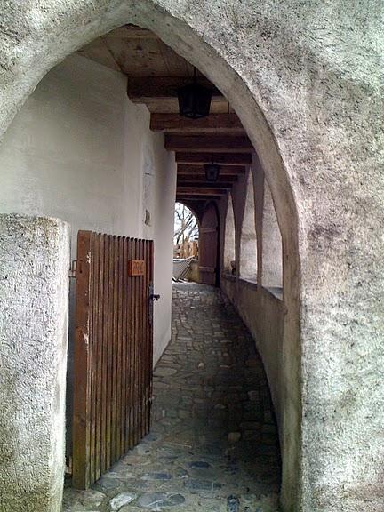 Замок графов де Грюйер (Chateau de Gruyeres) 92098