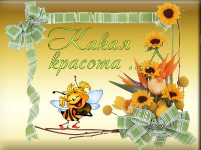 бабочка.какая красота (400x300, 38Kb)